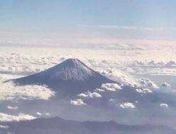 迎春 富士山