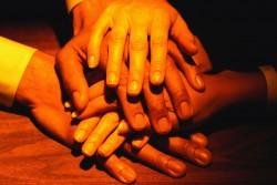 クラリティマインド事業サービス:組織開発